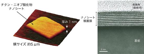 チタン・ニオブ酸化物ナノシートの原子間力顕微鏡像(左)とナノシート積層膜の断面透過型電子顕微鏡写真