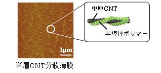 東レ「作製した単層CNT薄膜の様子と単層CNTに付着したP3HTのイメージ」