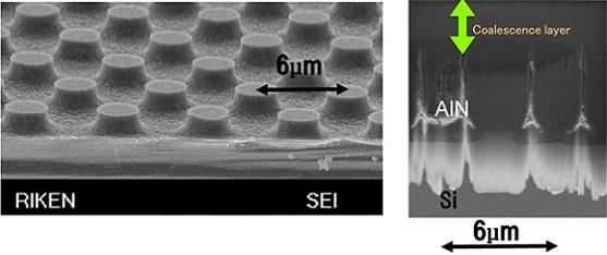 加工Si基板(PSiS)の鳥瞰写真(左)とPSiS上窒化アルミニウム(AlN)層の断面写真(右)