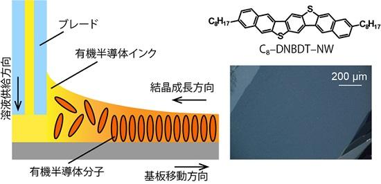 NIMS: (左) 有機半導体インクから大面積単結晶薄膜を塗布製膜する手法の概要図。 (右) 高移動度有機半導体材料の構造式と2次元単結晶領域の偏光顕微鏡写真。